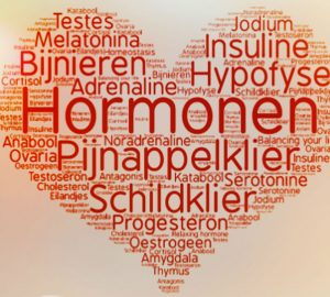 Hormoonyoga